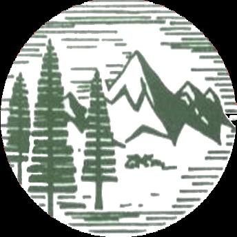 Mentor Company Logo